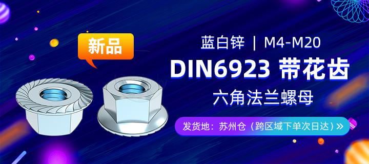 DIN6923